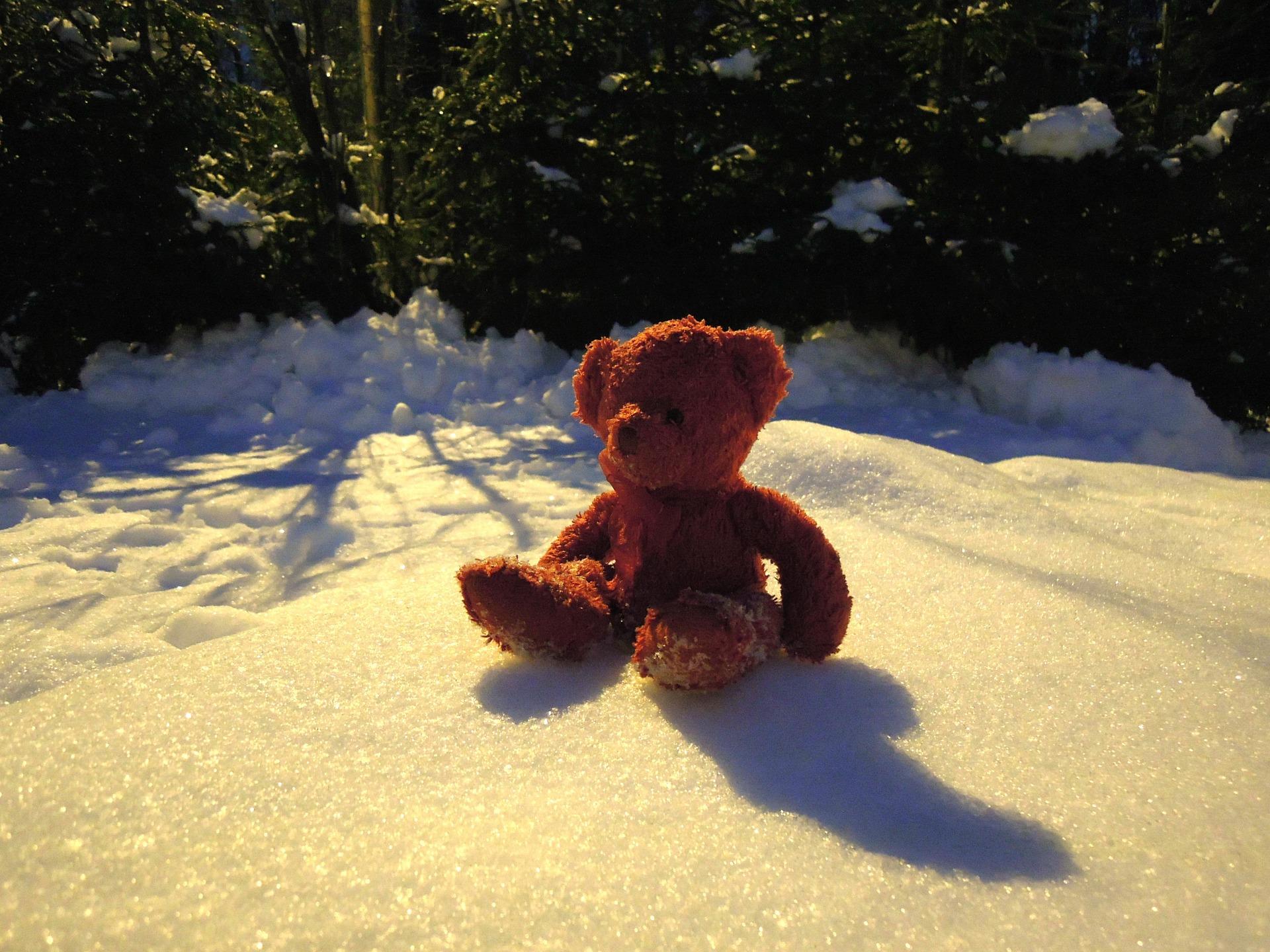 雪とテディーベア