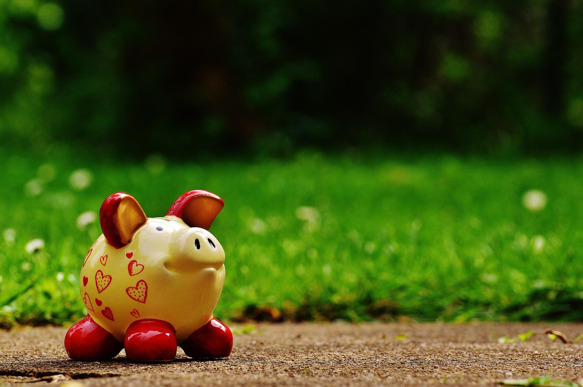 自然と豚さんの貯金箱