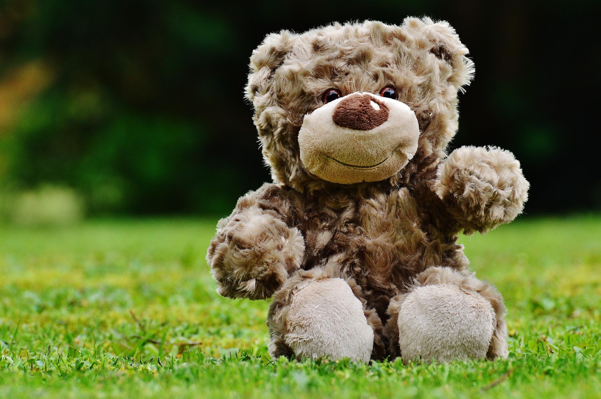 くまの可愛い人形と芝生